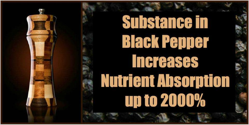 'Putting Black Pepper on your food increases nutrient absorption up to 2000%'