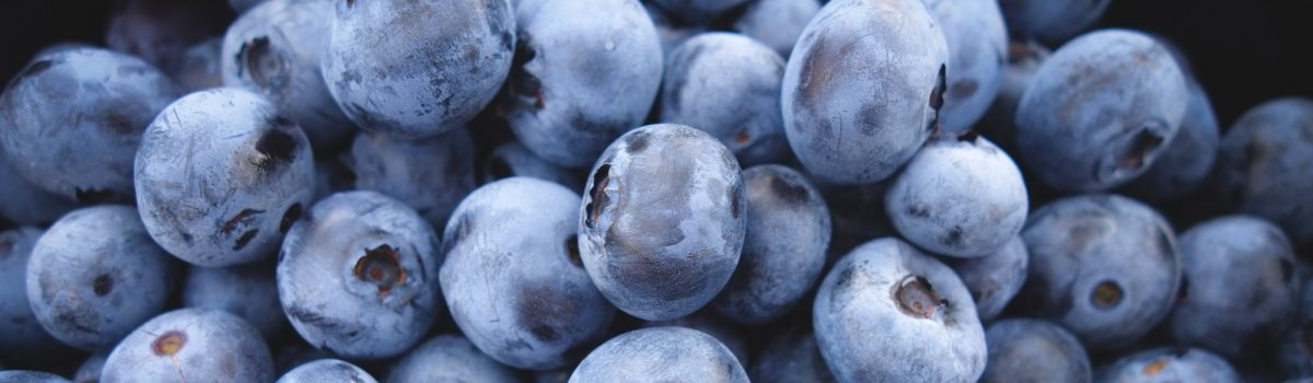 10 Best Ever, Healthy Fat Burning Foods for Weight Loss