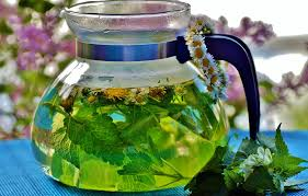 Top 11 Herbal Teas with Amazing Health Promoting Actions